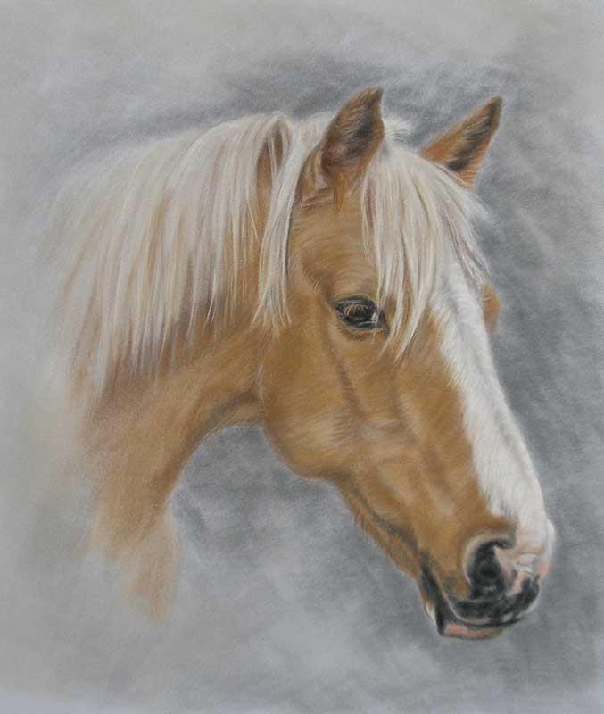Horse Portrait Artist