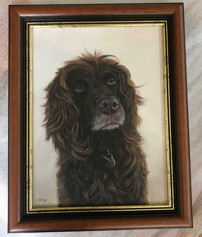 Framed Oil painting of a Spaniel