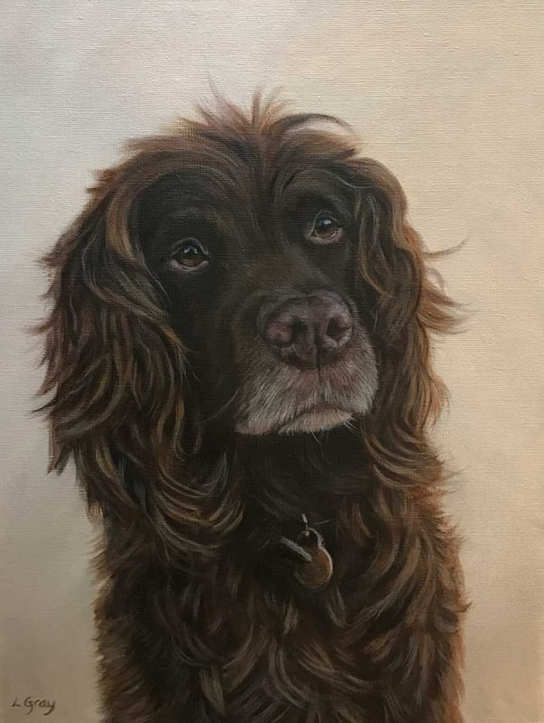 Spaniel dog portrait in oils