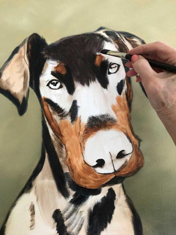 Doberman portrait work in progress