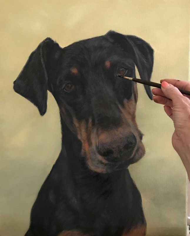 Doberman Portrait in Oils