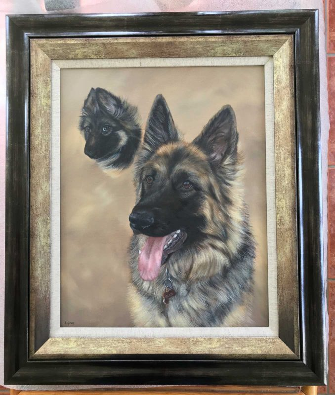 German Shepherd portrait framed