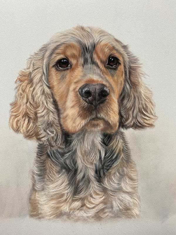 Pet Portraits UK - Lorraine Gray