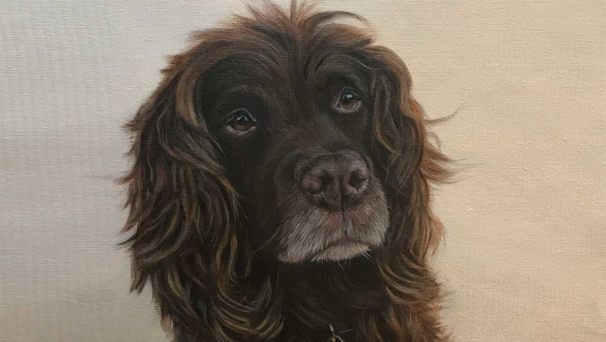 Spaniel Portraits in Oils by Pet Portrait Artist Lorraine Gray